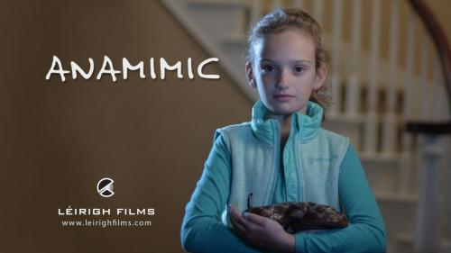 Production Design for Thriller Film, Anamimic.